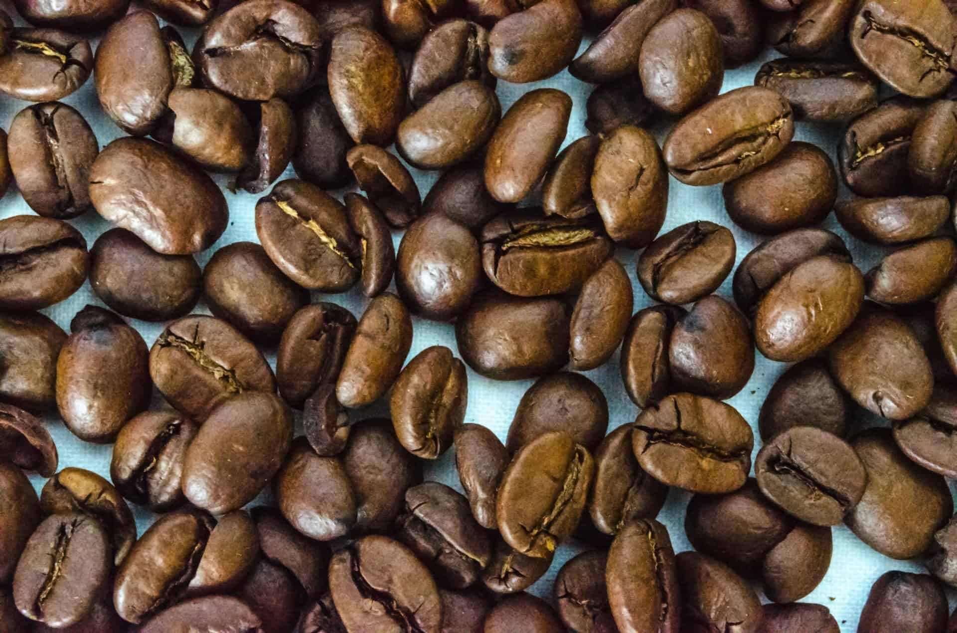 Cafeïne - Nootropics - Energie - Next Valley